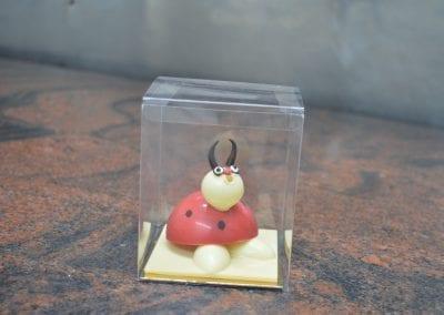 Chocolate ladybird